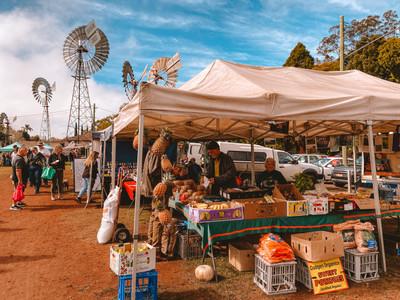 Toowoomba Farmers Market stalls