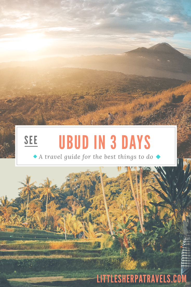 See Ubud Bali Indonesia in three days travel guide for the best things to see and do