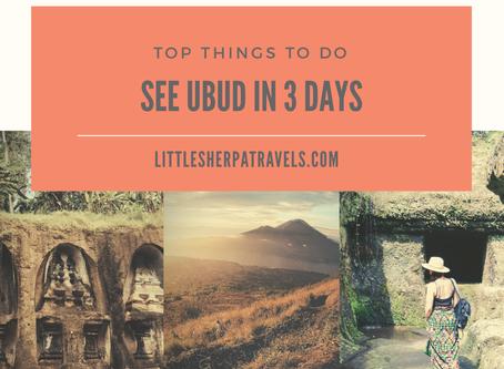 3D 2N Ubud, Bali travel guide:  temples, volcanos, jungle pool bars