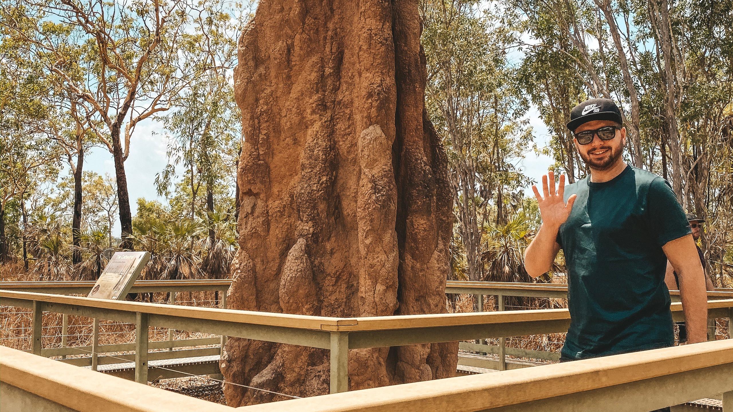 Termite mounts litchfield national park