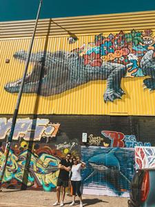 Darwin city Street art murals crocodile northern territory australia