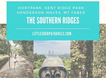 Walk the Southern Ridges, Singapore: HortPark, Kent Ridge Park, Henderson Waves, Mt Faber
