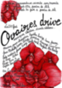 Ovaires drive.jpg