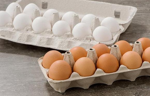 Eggs - Local, Antibiotic Free