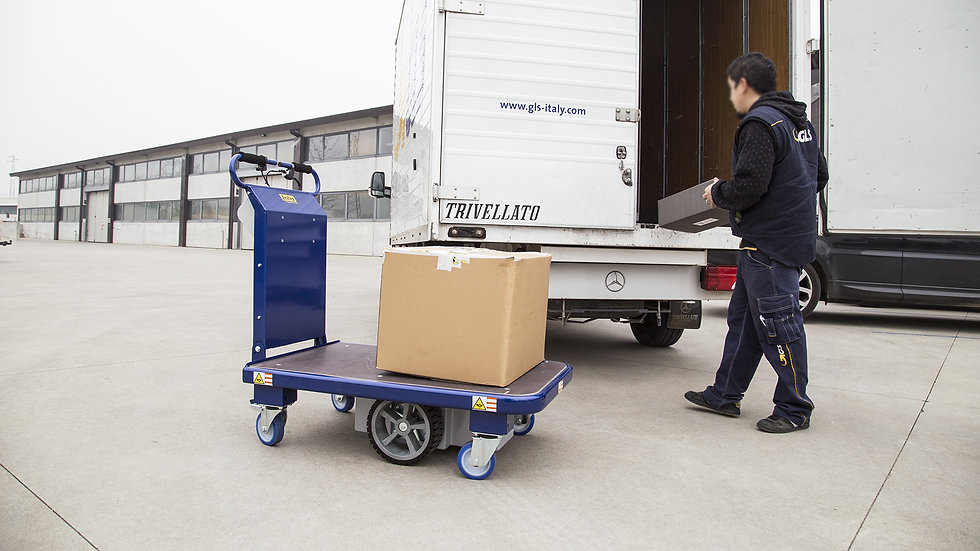 Zallys M15 helps in loading and unloading operations