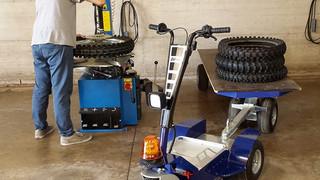 Zallys DDM triciclo elétrico utilitário