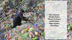 New Enzyme Breaks Down Plastic