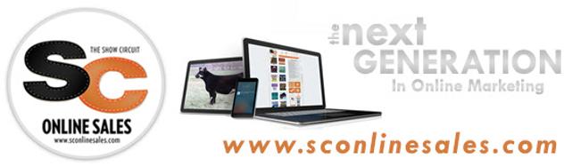 SC Online sales.png