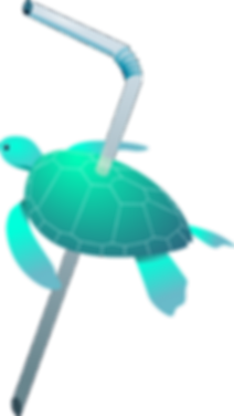 seaturtle only.png