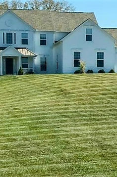 Greenery Scenery Lawn Care | Lawn Mowing | Columbus, OH