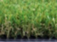 Pasto ornamental 2.webp