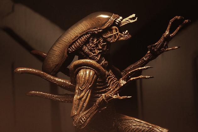 "ALIEN WARRIOR Alien: Resurrection Serie 14 NECA 7"""