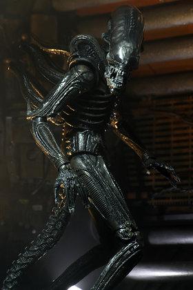 """Alien ALIEN Big Chap Ultimate 7"""" 40th Anniversary NECA"""