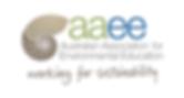 aaee logo brand.png