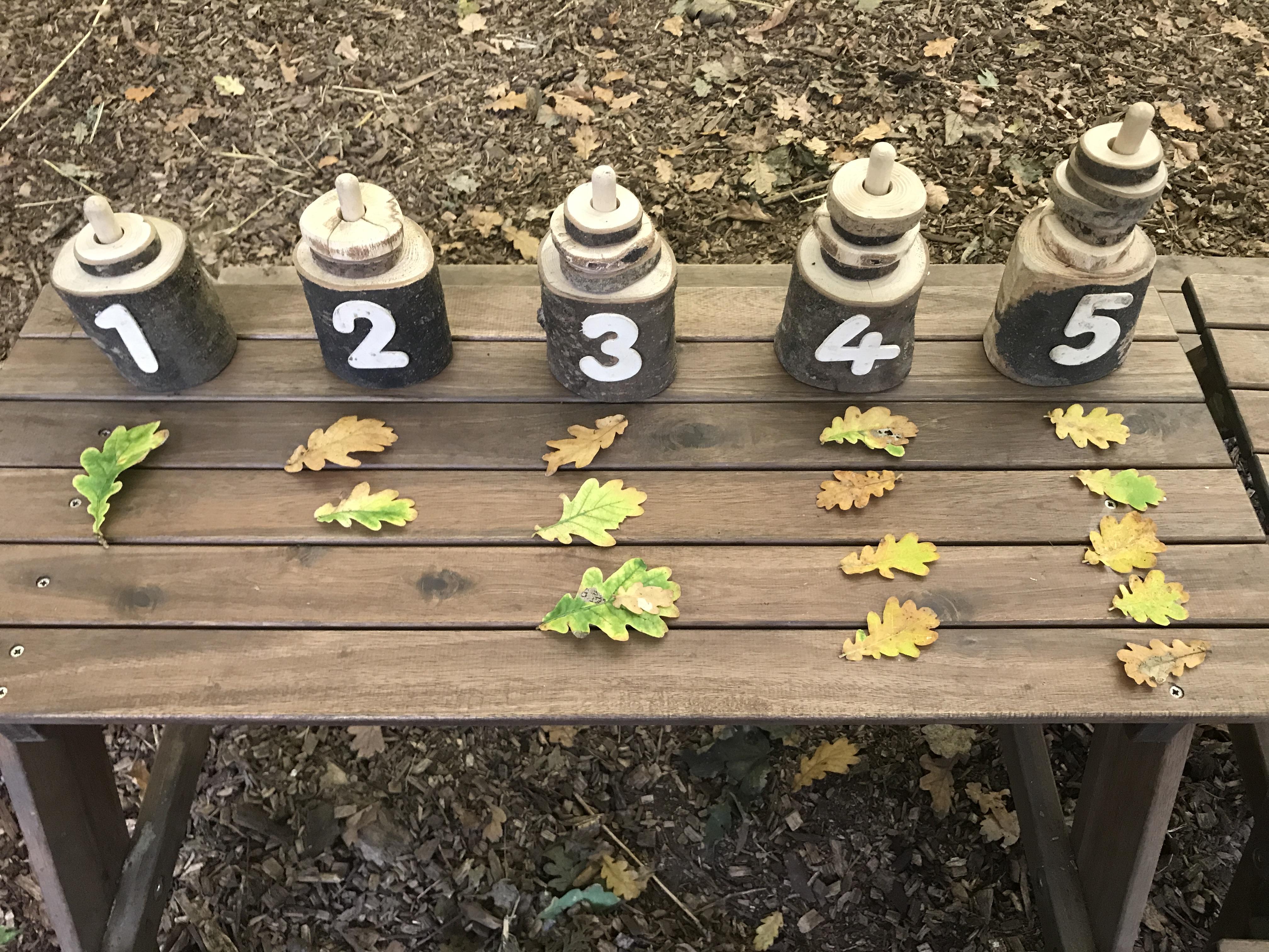 Woodland mathematics