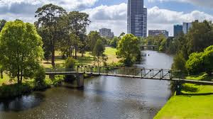 Bringing plants back to Parramatta Park