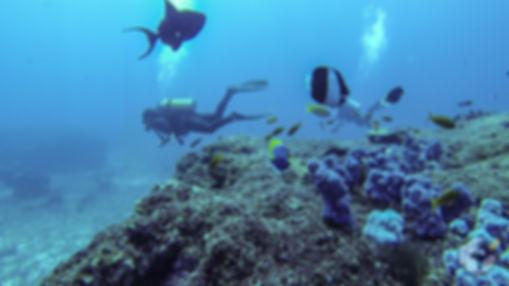 turismo-em-Mocambique-11.jpg