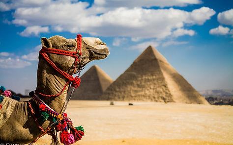egypt-1-1080x675.jpg