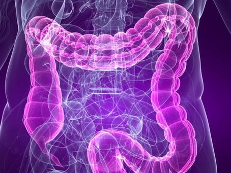 Тяжесть течения СOVID-19 связана с кишечной микрофлорой