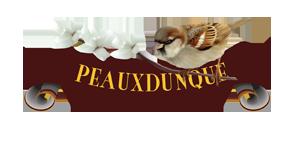 PR-Logo2.png