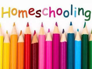 Home Schooling - zoom fatigue and emotional regulation.
