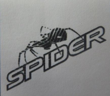 スパイダー クモ&文字