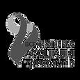 Всеукраінська-Асоціація-Трихологів-Сертифікат_edited.png
