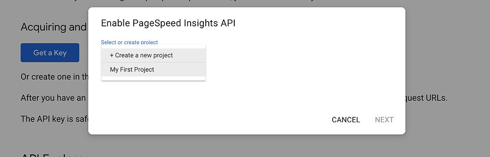 Creating a project on Page Speed Insights API page