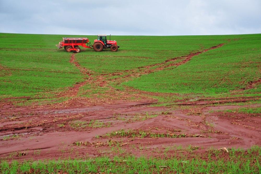 Erosão hídrica em lavoura