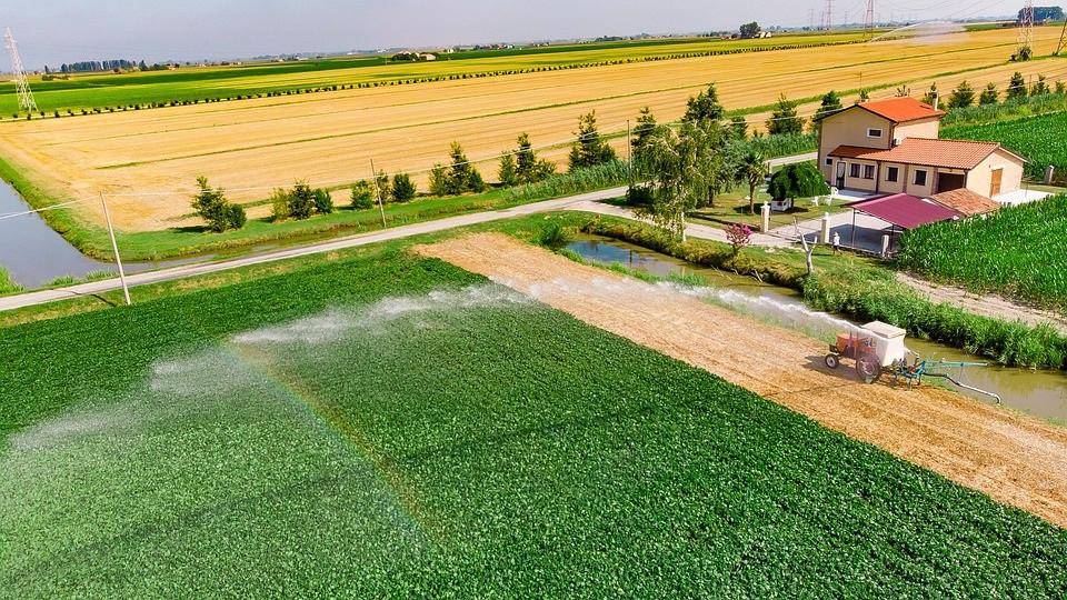 Imagem de área cultivada com sistema de irrigação
