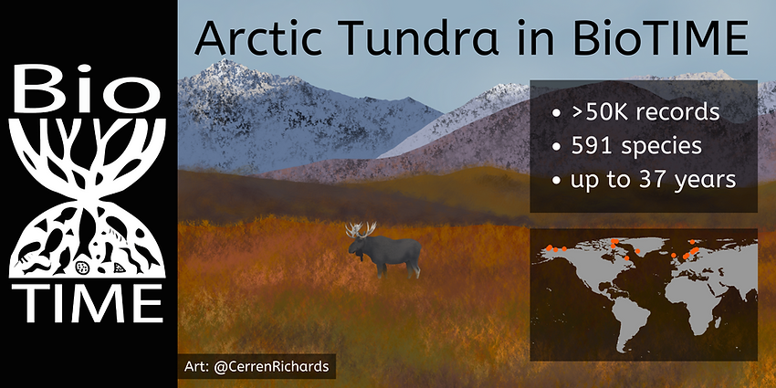 Arctic Tundra in BioTIME.png