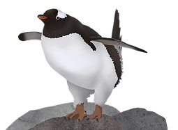 Gentoo_Penguin (3).png