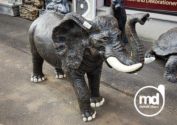 Elefante Mediano