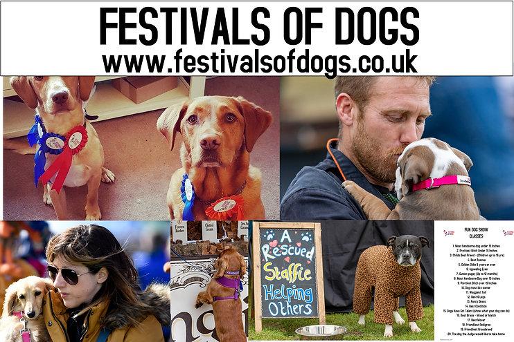 Festivalsofdogs (1).jpg