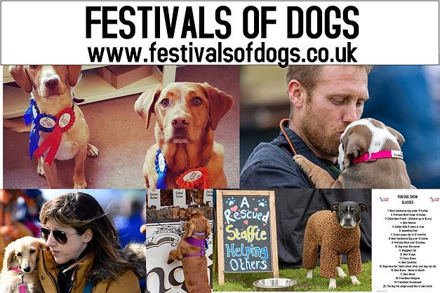 Festivalsofdogs (2).jpg