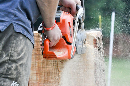 2016 Chainsaw Speed Carving-73.jpg