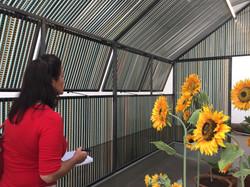 Exposition Agnès Varda