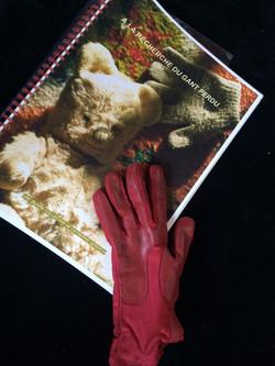 recueil Le gant rouge