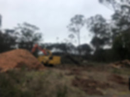 land clearing tasmania arborists