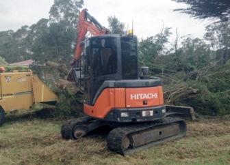 all tree solutions tasmania arborists