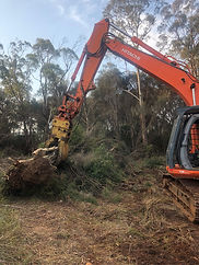 land clearing arborists tasmania