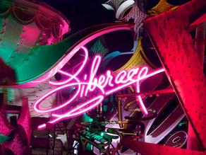Where Neon Signs Retire