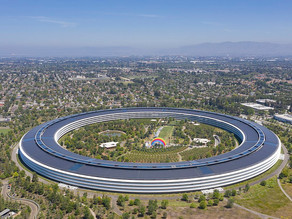 Apple: From Park to Petri Dish