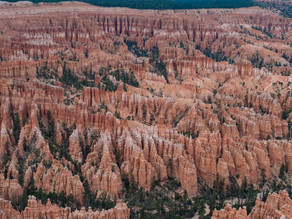 The Largest Concentration of Hoodoos on the Planet