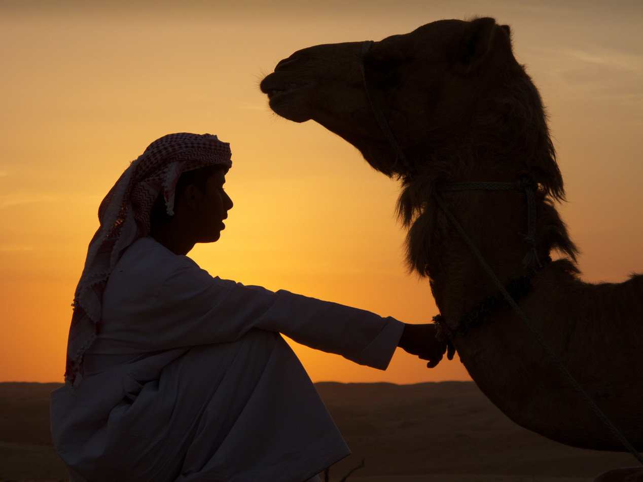 A Bedouin Boy and His Camel, Oman