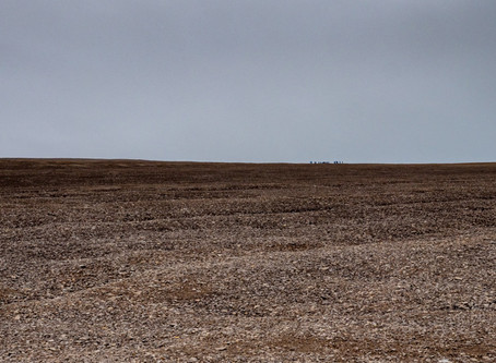Beechey Island: Dying in a Desolated Land