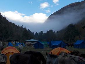Trek Day 3: Soi Thangthangka to Jangothand