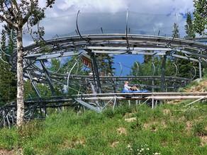 Riding a Mountain Coaster