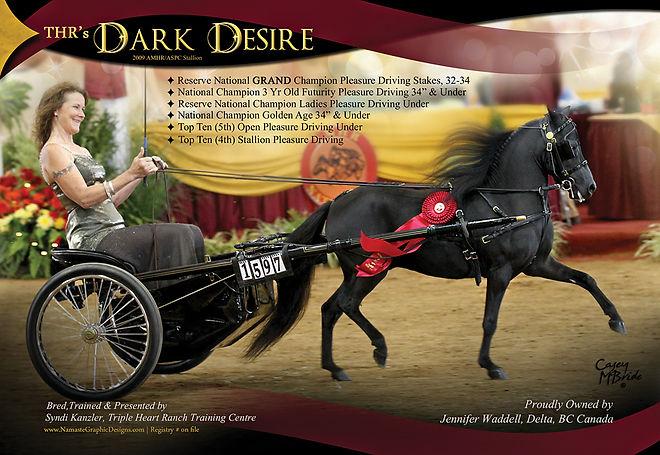 Syndi-Kanzler--Dark-Desire-.jpg