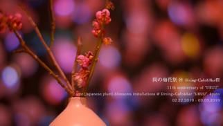 閏の梅花祭